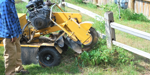 Ace Tree Service Stump Grinding